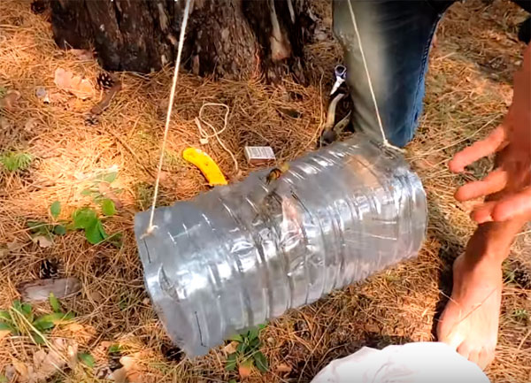 ловушка для раков из пластиковыхбутылок