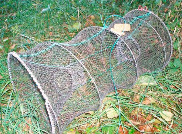 Ловля Рыбы Путанками